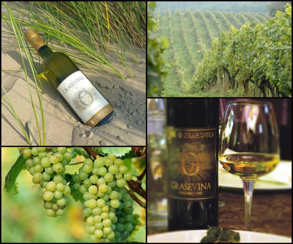Wijnweetje van de week: Graševina, de meest voorkomende druif van Kroatië