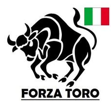 Forza Toro hefbruggen