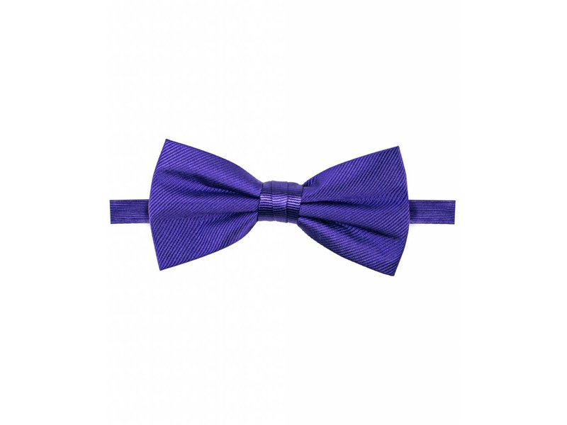 Michaelis Bowtie purple solid silk.