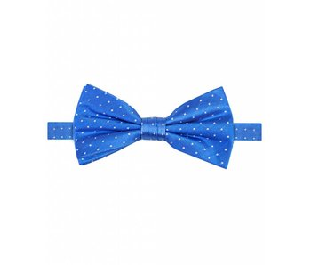 Michaelis Bowtie royal dot silk.