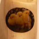 Holzschuhe mit einem Bild von Ihrem Lieblingstier