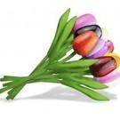 gemengd boeket houten tulpen 20cm