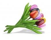 Wooden tulips 20cm