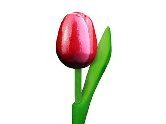 De Kleur Rood : Houten tulpen in de kleur rood wit cm de hollandse klompenwinkel