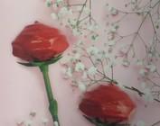 houten rozen