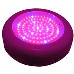 LED Kweeklamp