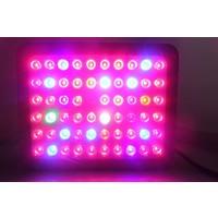 LED Kweeklamp Growlight 300W
