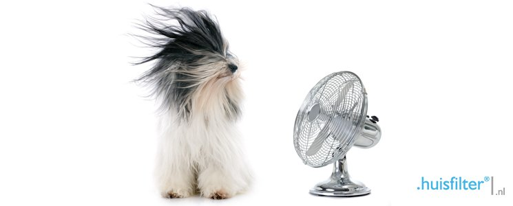 Goede ventilatie