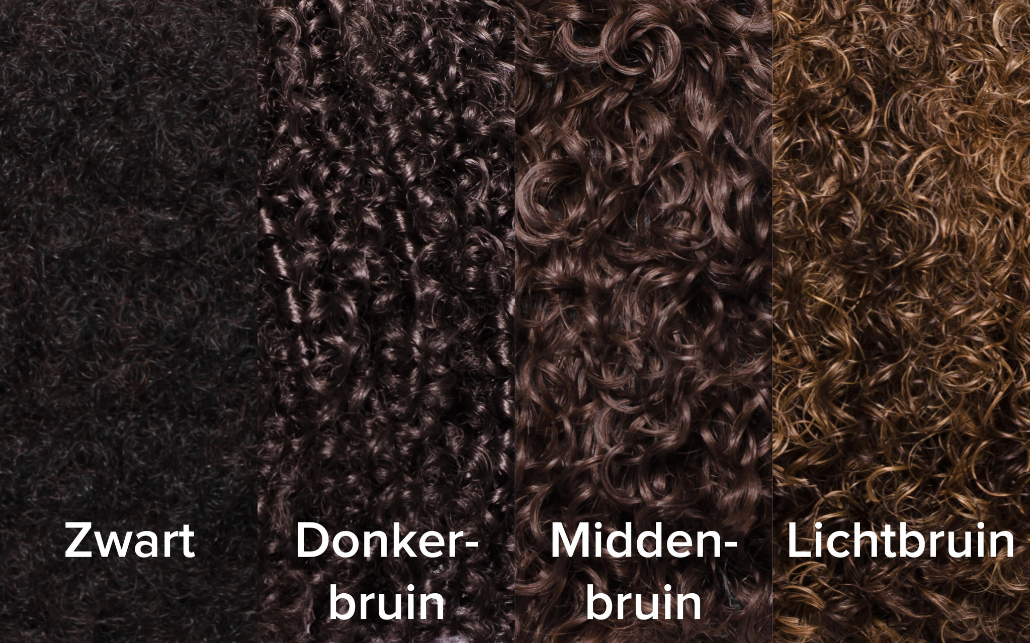 Kleuren Zwart Piet pruiken