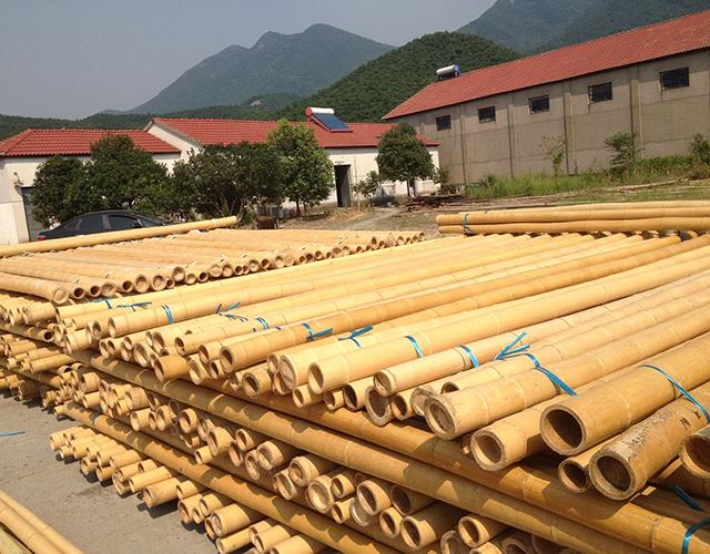 Niet alleen de kap en groei van de bamboe is milieuvriendelijk, ook het verwerken van de bamboe tot parket en plaatwerk wordt op een bewuste wijze gedaan.