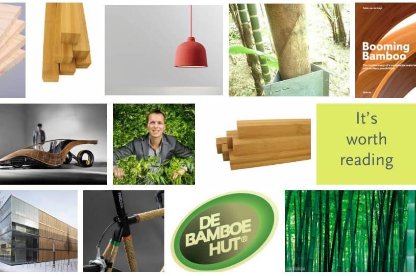 Booming Bamboo: voor al jouw bamboe inspiratie