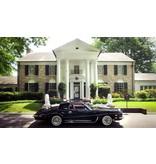 Stutz Blackhawk - Elvis 1971 Car - Schaal 1/43