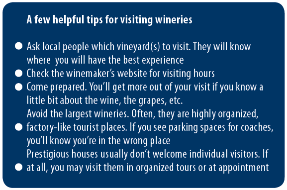 Tips for visiting wineries blue