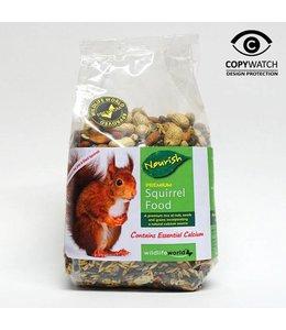 Eichhörnchen Futter