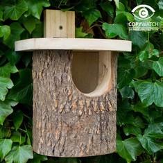 wildlife garden rotkehlchen handgeschnitzt villa j hn gmbh. Black Bedroom Furniture Sets. Home Design Ideas