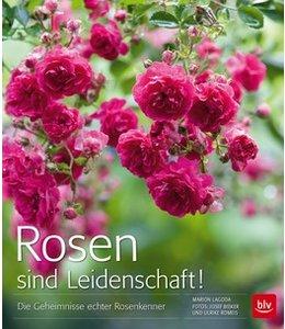 Garten Rosen sind Leidenschaft