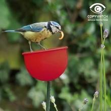 Wildlife World Futterbecher für Gartenvögel rot