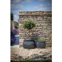 Gartendekoration Landhausstil Pflanztöpfe im englischen Landhausstil 2er Set