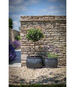Garten Pflanztöpfe im englischen Landhausstil 2er Set