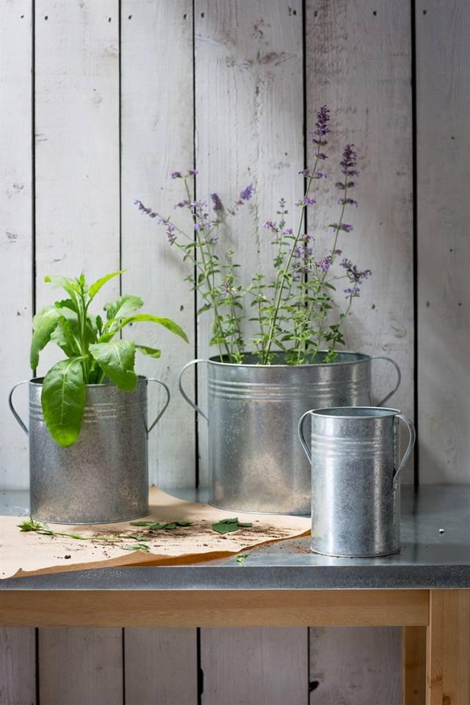 traditionelle pflanzt pfe aus england 3er set villa j hn. Black Bedroom Furniture Sets. Home Design Ideas