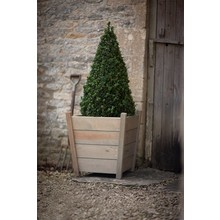 "Gartendekoration Landhausstil Holz Pflanzkübel ""Kingham"" groß"