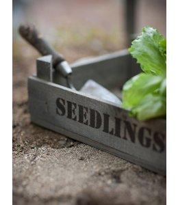 """Stabiler, kleiner Anzuchtkasten """"Seedlings"""" aus robustem Fichtenholz"""