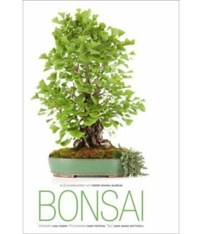 Gartenbücher Bonsai