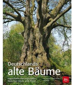 Garten Deutschlands alte Bäume