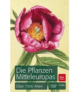 Garten Die Pflanzen Mitteleuropas