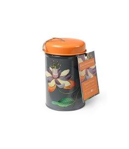 Gartenschnur Passiflora