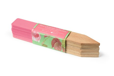Burgon & Ball Pflanzetiketten Rosa Chinensis