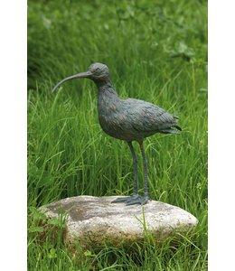 Brachvogel Bronze