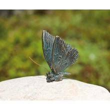 Patric Rottenecker Schmetterling Bronze