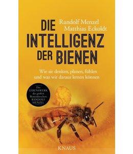 Garten Die Intelligenz der Bienen