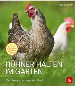 Garten Hühner halten im Garten