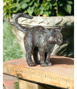 Landhaus Junge Katze Bronze