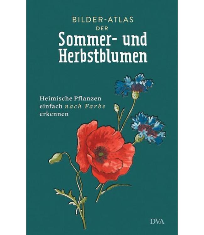 Bilder-Atlas der Sommer- und Herbstblumen