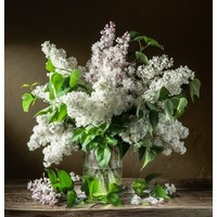 Blumenvasen & Töpfe