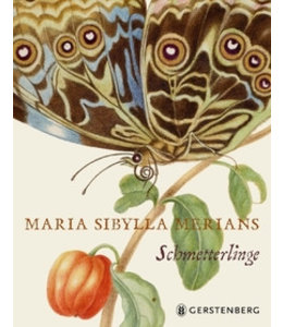Shabby Chic Maria Sibylla Merians Schmetterlinge