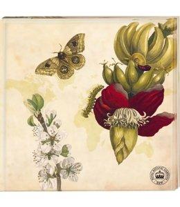 """Landgarten Kew Gardens - Untersetzer """"Schmetterling"""", 2er-Set"""