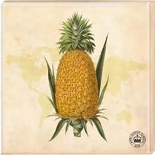 """Kew Gardens Kew Gardens - Untersetzer """"Ananas"""", 2er-Set"""