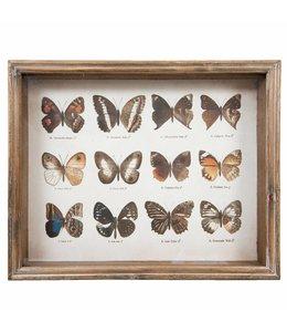 Shabby Chic Wandbild Schmetterlinge