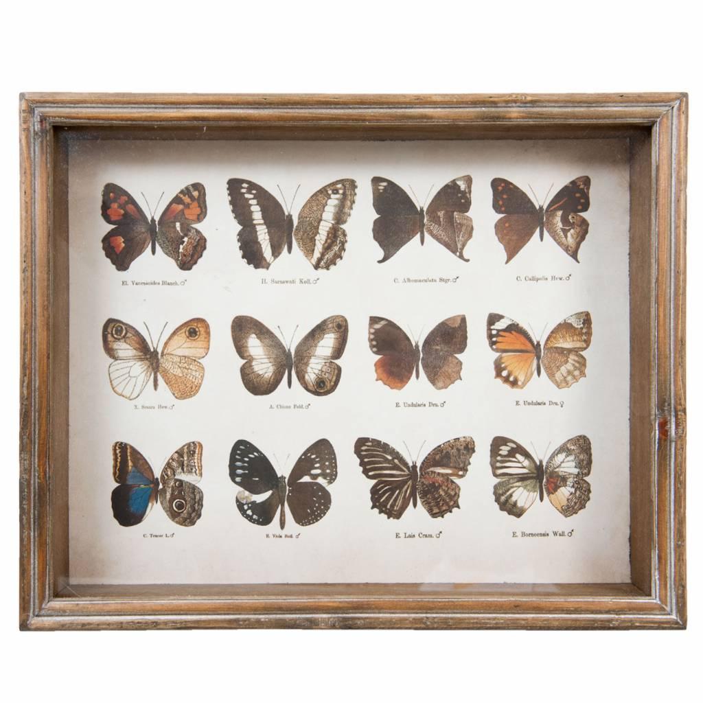 Wohnaccessoires Landhausstil Wandbild Schmetterlinge