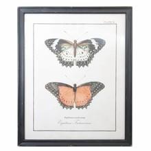 Wohnaccessoires Landhausstil Großes Wandbild Schmetterling