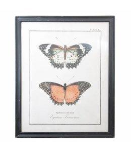 Shabby Chic Großes Wandbild Schmetterling