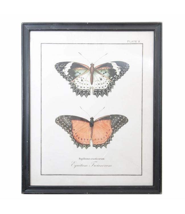 Landhaus Großes Wandbild Schmetterling