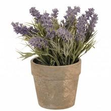 Villa Jähn Landhaus Kollektion Blumentopf mit Lavendel