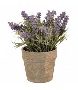 Blumentöpfe Landhausstil Blumentopf mit Lavendel