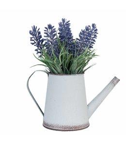 Garten Gießkanne mit Lavendel