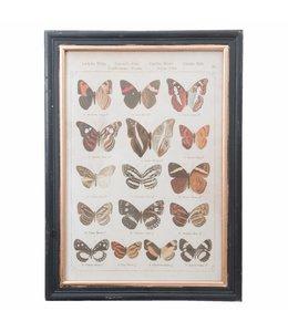 Landhausstil Wandbild Schmetterlinge